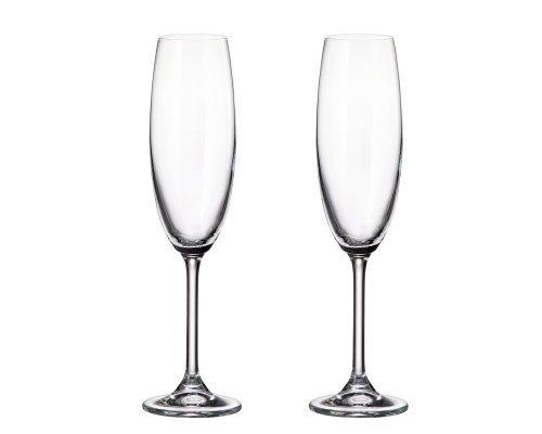 Набор бокалов для шампанского Crystalite Bohemia Colibri/Gastro 220 мл (2 шт)
