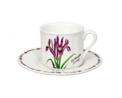 Чашка с блюдцем Ирисы IMARI