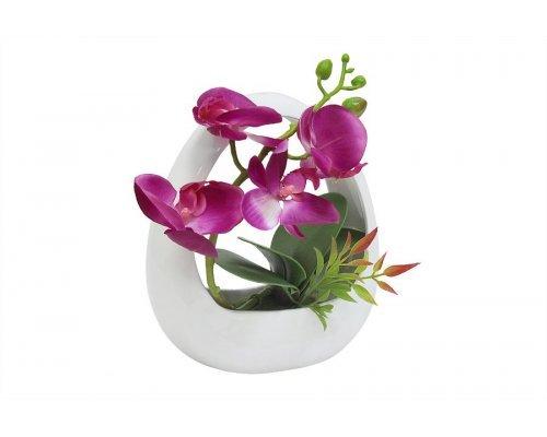 Декоративные цветы Dream Garden Орхидея тём.сиреневая в керамической вазе