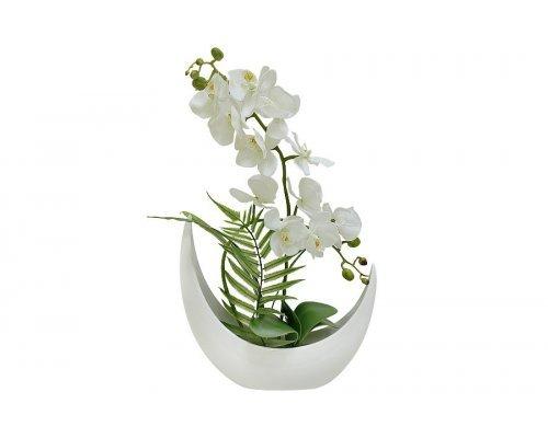 Декоративные цветы Dream Garden Орхидея белая в керамической вазе
