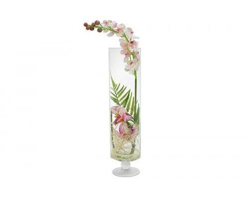Декоративные цветы Dream Garden Орхидея светло-розовая в стеклянной вазе